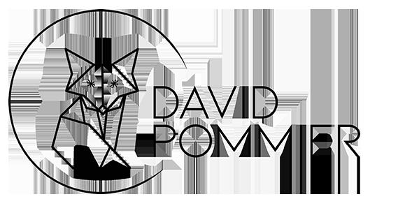 David POMMIER, photographe de mariage à Lyon Logo
