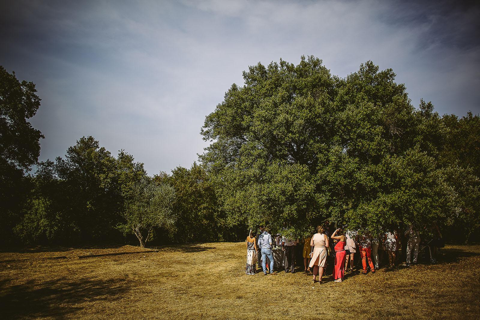 Mariage au Comptoir Saint Hilaire. Vin d'honneur sous un arbre à cause de la chaleur