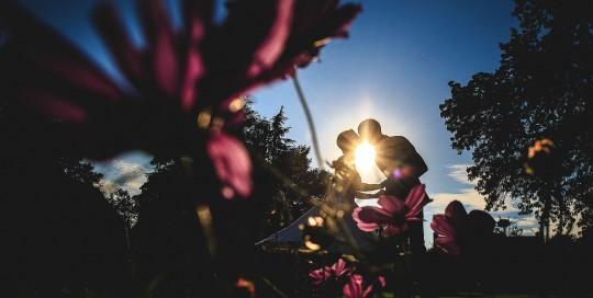 Mariage Manoir des Prévanches. David Pommier photographe de mariage. Magnifique photo de couple à contre jour à travers les fleurs